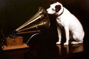 HMV-dog