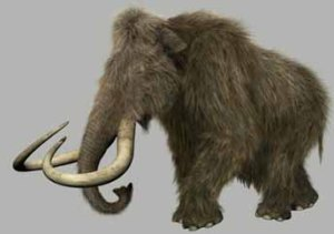 mammothhairy