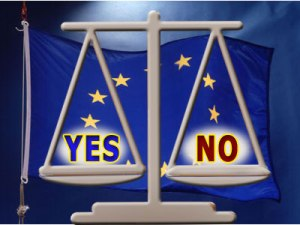 referendum_en